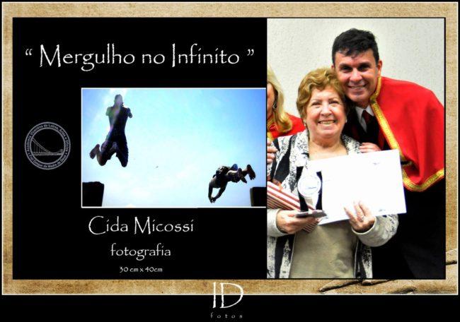 Aparecida de Lourdes Micossi Perez
